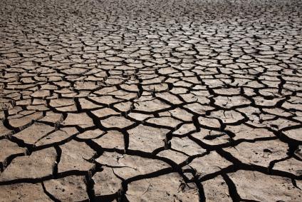 dry rough land